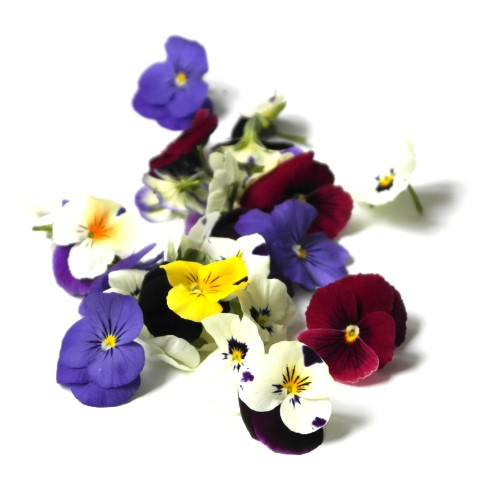 Fresh Edible Flowers